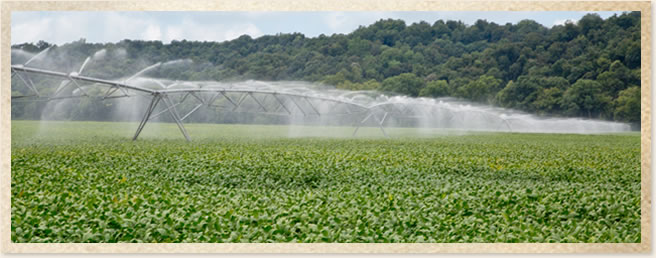 Loan Programs | Alabama Farm Credit