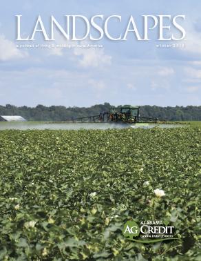 landscapes publication image