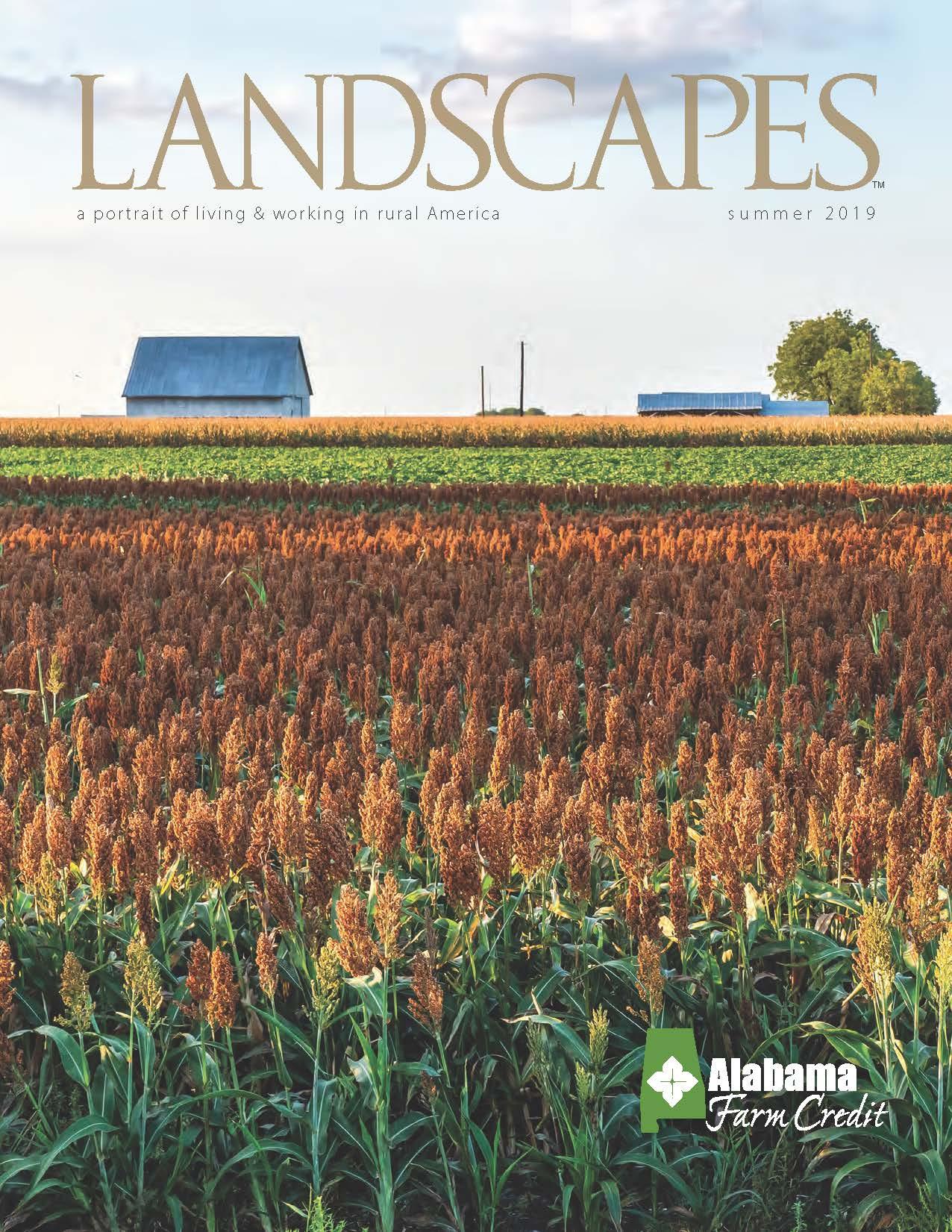 Landscapes Summer 2019